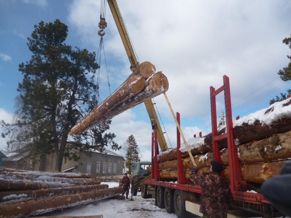 """Разгрузка! МТЗ -80, кран, 2 огромных машины с лесом, 8 человек и полдня работы на ледяном ветру. И всё спрашивали нездешние мужики: """" Такой вот он и будет храм ? как на той картинке?"""")))"""